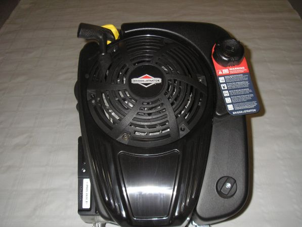 Briggs & Stratton 6 PS OHV Motor