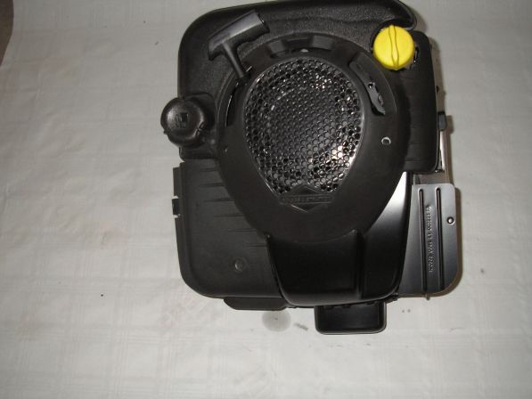 Briggs & STratton 6,5 PS OHV Motor